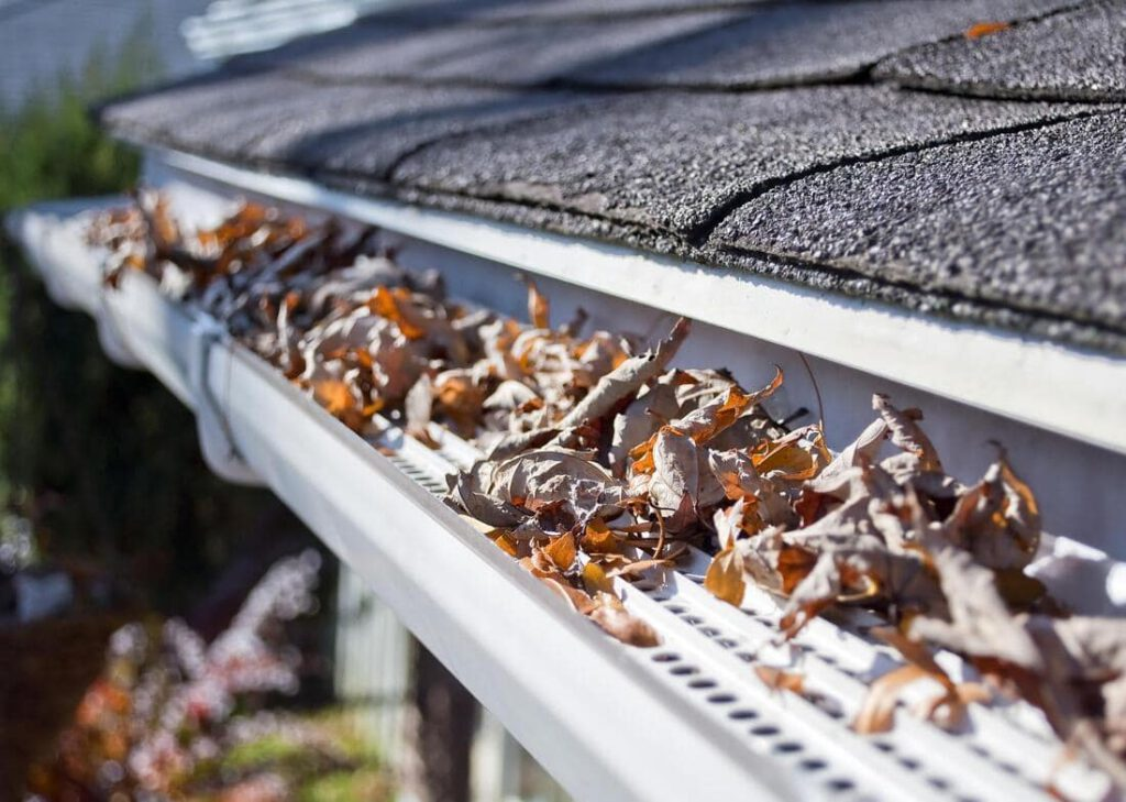 Gutter Cleaning Service -Newton Window Cleaning